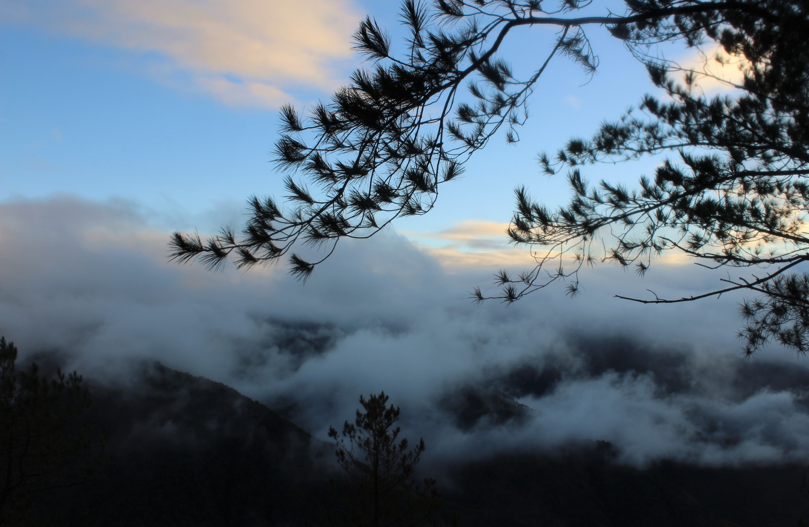 sagada-kiltepan-peak-viewpoint-sea-of-clouds